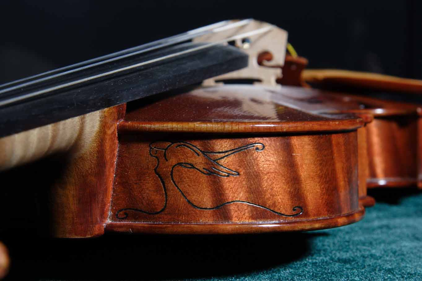 Photographs From The Luthier S Diary Series